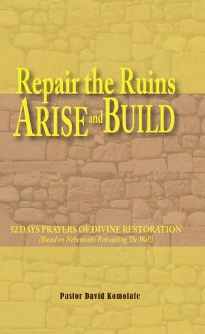repair the ruins - arise and build book image