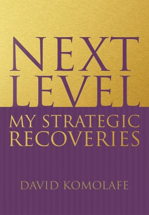 next level - my strategic recoveries book image